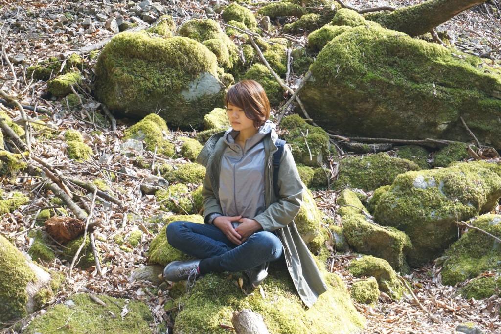 川上村 水源地の森