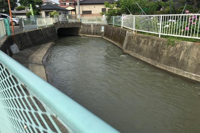 微生物、環境浄化、ドブ川のイメージ